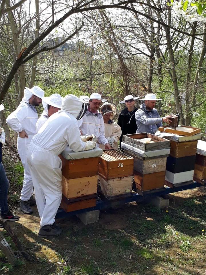 SVI PČELARI SVETA I PRIJATELJI PČELA UJEDINITE SE